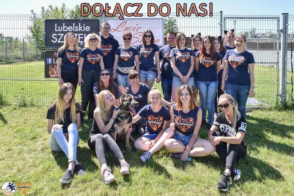 Zostań wolontariuszem w schronisku dla bezdomnych zwierząt w Lublinie.