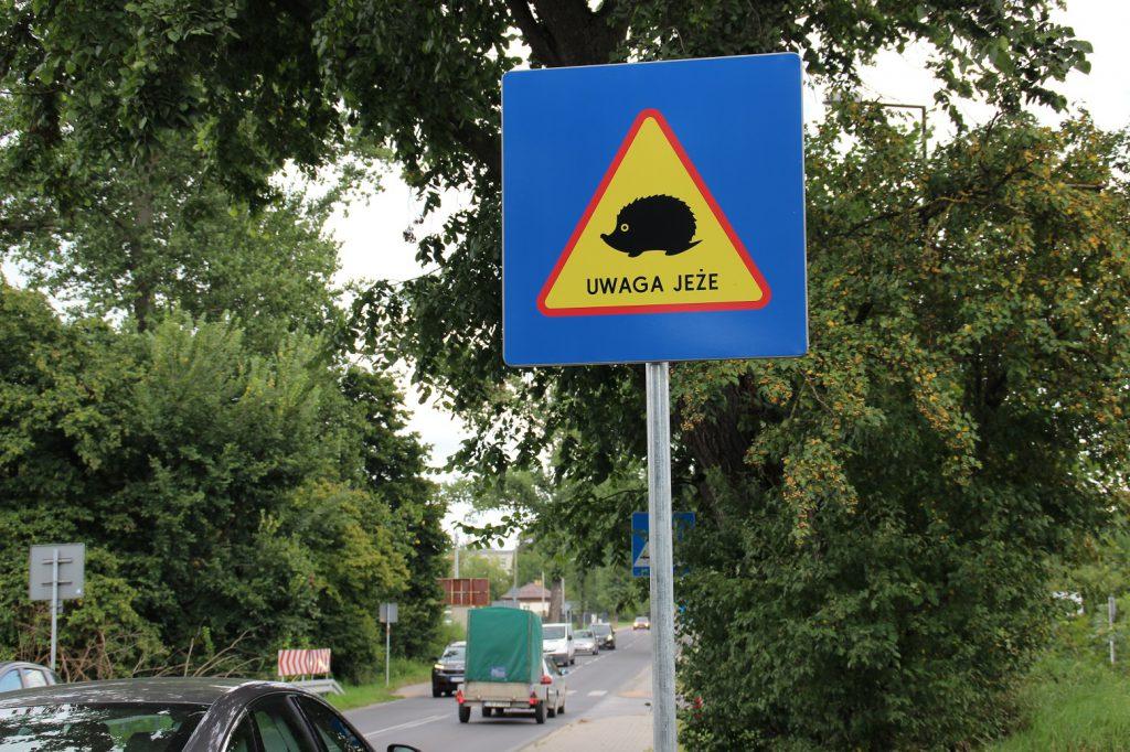 """Tabliczki """"Uwaga jeże"""" już ostrzegają kierowców"""