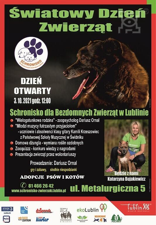 Dzień Otwarty w Schronisku dla Bezdomnych Zwierząt w Lublinie